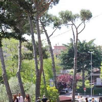 Organizzazione dell'università in Italia
