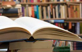 laurea triennale in lettere curriculum materie letterarie e linguistiche